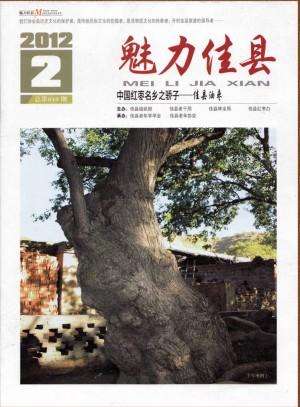 《铁葭州》期刊 第04期