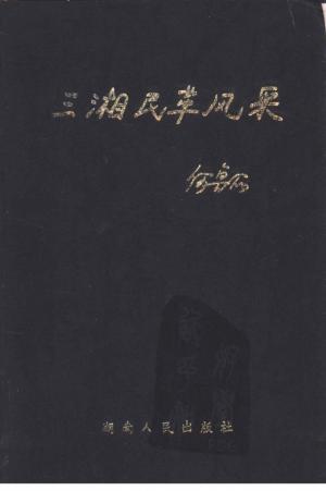 《三湘民革风采》1997年