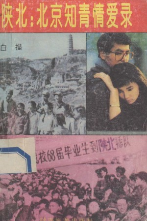 《陕北北京知青情爱录》白描 著 1993年
