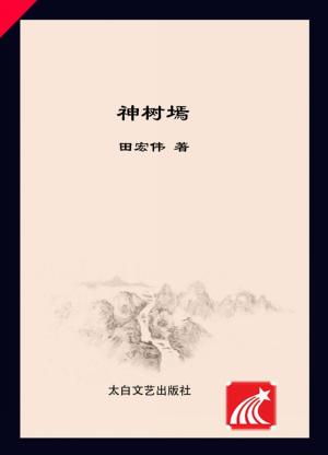 《神树墕》田宏伟 著 2017年