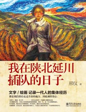 《我在陕北延川插队的日子》邢仪 著 2014年