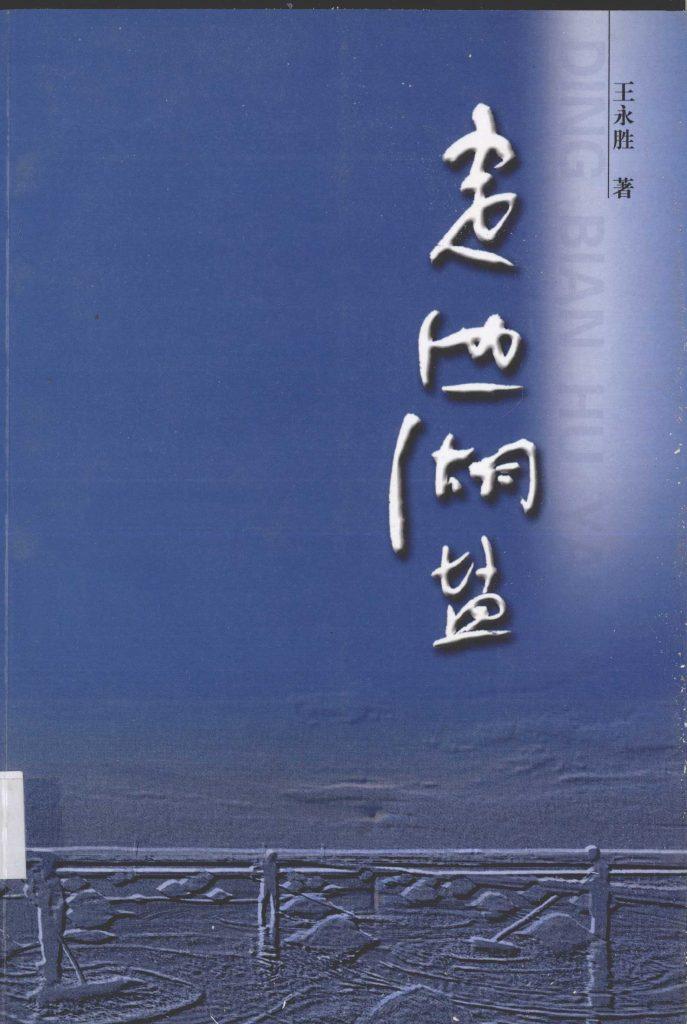 《定边盐湖》王永胜 著 2007年